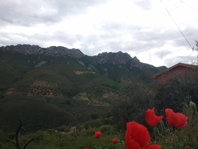2014-05-29 GEOPARQUE